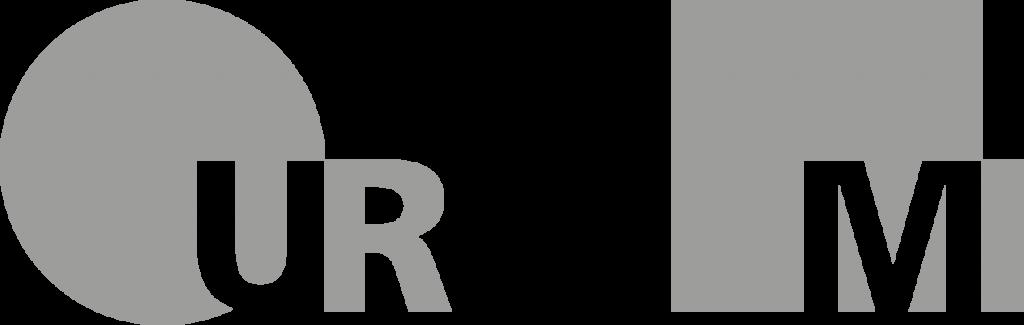 Uni Regensburg Medieninformatik Logo